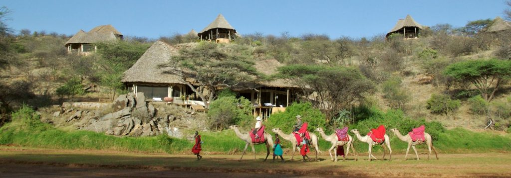 1423946500Sasaab Camp-Samburu-Camel Safari